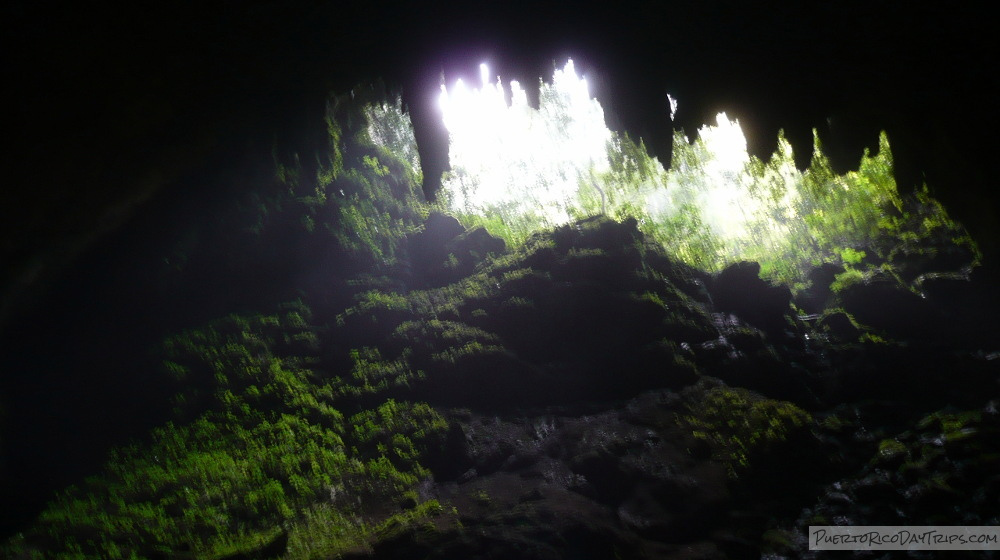 Rio Camuy Cave Visitor Information Puerto Rico Day Trips Travel Guide