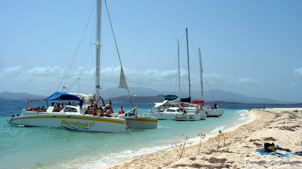 Snorkel Boat Tours A Day Of Sun Wind Sea Life Puerto Rico Day