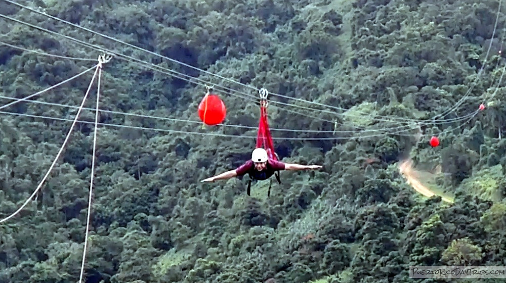 Toro Verde Nature Adventure Zipline Park | Puerto Rico Day