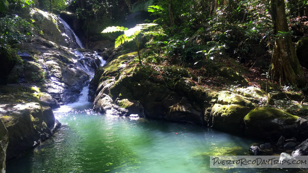 Puerto Rico Day Trips | The Best Puerto Rico Travel Guide