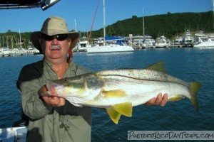 Light tackle paradise 787fishing puerto rico day trips for Fly fishing puerto rico