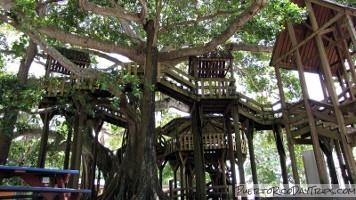 aguadilla treehouse park