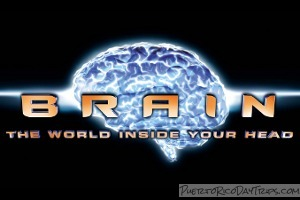 Brain: The World Inside Your Head
