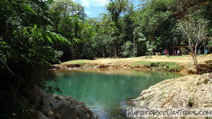 Charco Azul in Carite Forest