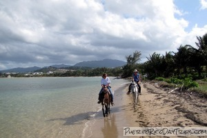Catch A Dream Beach Horseback Ride
