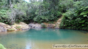 Charco Azul Swim In A Natural Pool In Carite Forest Puerto Rico Day Trips Travel Guide