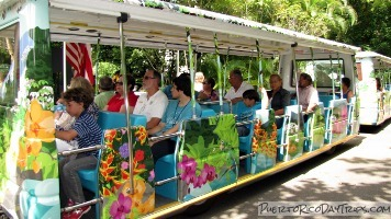 El Yunque National Forest Tram