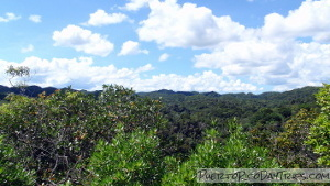 Guajataca Forest Interpretive Trail