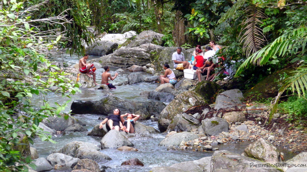El Yunque in July