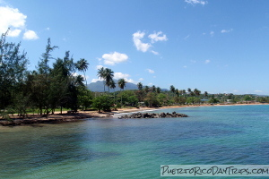 Luquillo Beach (behind the Kiosks)