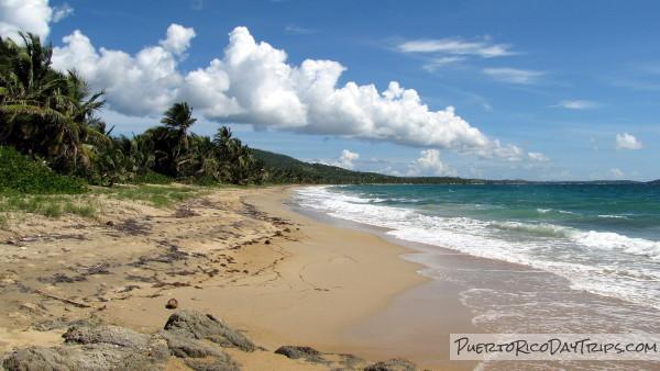 Playa Grande Beach On Vieques