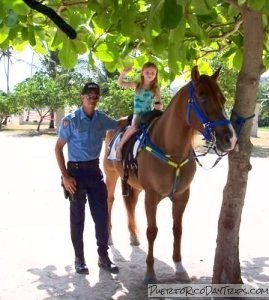 Friendly mounted police at Seven Seas