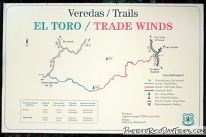 Trade Winds Trail Head