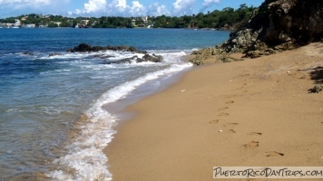 Vieques Sea Glass