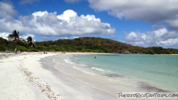 Vieques Snorkeling