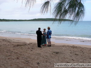 Wedding on Seven Seas Beach in Fajardo