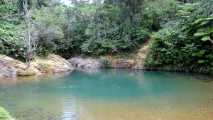 Charco Azul – Swim in a Natural Pool in Carite Forest