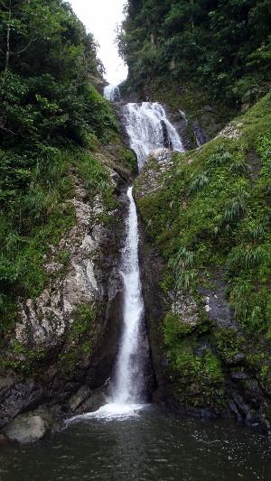 Dona Juana Waterfall Near Toro Negro Forest Puerto Rico
