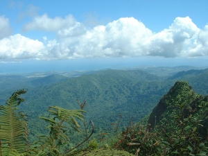 View from El Yunque