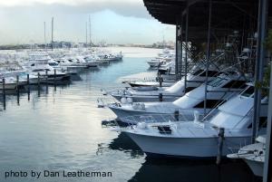 Fish Tales Deep Sea Fishing In San Juan Puerto Rico Day