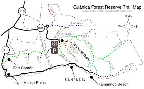 Guanica Forest Map