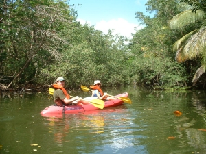 Kayaking in the Humacao Nature Reserve