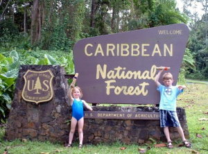 Kids at the rain forest